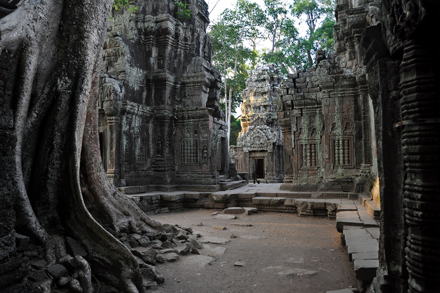 "Ta Prohm ""jungle temple"""